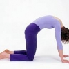 Cat Pose - Majaryasana